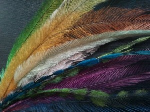 Natural Grizzly rooster feathers for sale