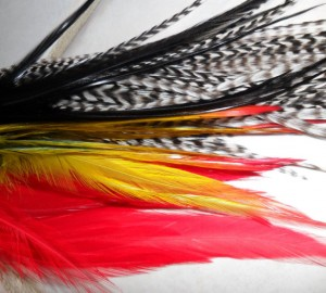Grizzy Roosters Feathers