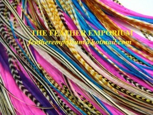 Grizzly Rooster Feathers Wholesale