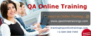 Software Testing Training in USA