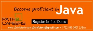 Java Online Training with Placement in Illinois