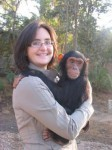 Sweet Baby male and female Chimpanzee Monkeys For Adoption now!!!!