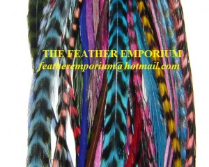 Wholesale Grizzly Rooster Feathers